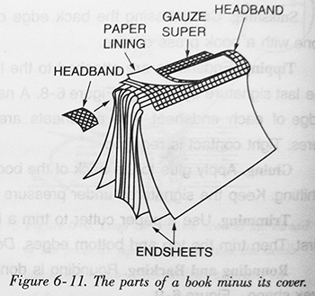 The parts of a book minus its cover