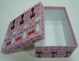Cardboard Shoe Boxes 1