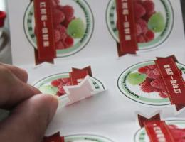 Waterproof Sticker Printing